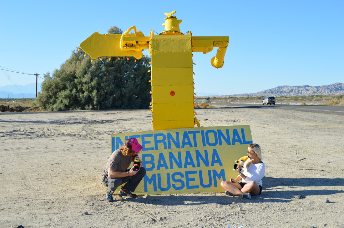 The International Banana Museum in Mecca, California #travel